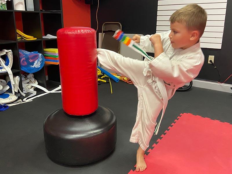 Little Tigers - Lupo Taekwondo